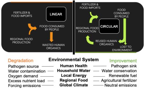 Sanitation Cycle